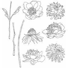 Tim Holtz Cling Rubber Stamp Set - Flower Garden