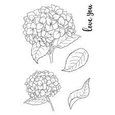 Jane's Doodles Clear Stamp Set - Hydrangea