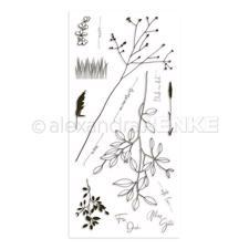 Alexandra Renke Clear Stamps - Grasses / Memories