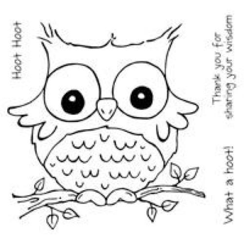 Clear Magic Stamp - What a Hoot