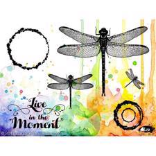 Visible Image Clear Stamps - Live in the Moment