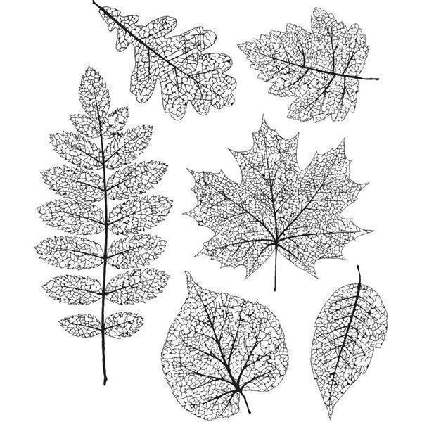 Tim Holtz Cling Rubber Stamp Set - Pressed Foliage