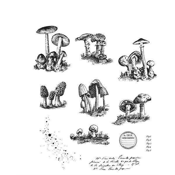 Tim Holtz Cling Rubber Stamp Set - Tiny Toadstools