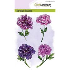 CraftEmotions Clear Stamp Set - Peony Flowers