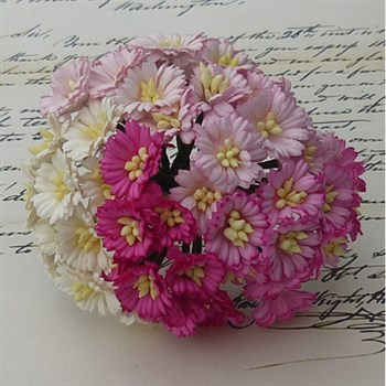Wild Orchid Crafts - Mulberry Cosmos Daisy / Pink & White Mix (50 stk.)