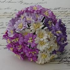 Wild Orchid Crafts - Mulberry Cosmos Daisy / Purple & White Mix (50 stk.)
