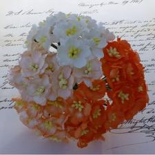 Wild Orchid Crafts - Mulberry Cherry Blossoms / Orange & White Mix (50 stk.)