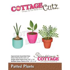 Cottage Cutz  Die - Potted Plants